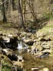Alles im Fluss 2012_12