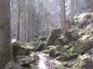 Alles im Fluss 2012_18